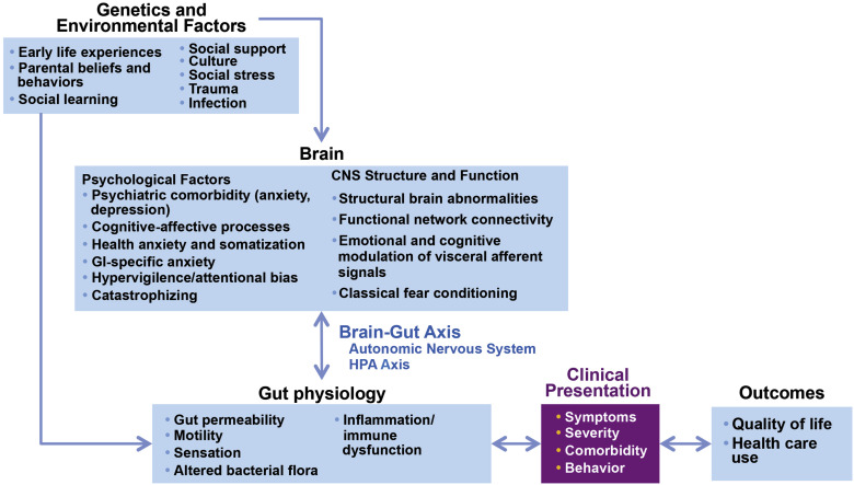 What is the Biopsychosocial Model? - Definition & Example ...